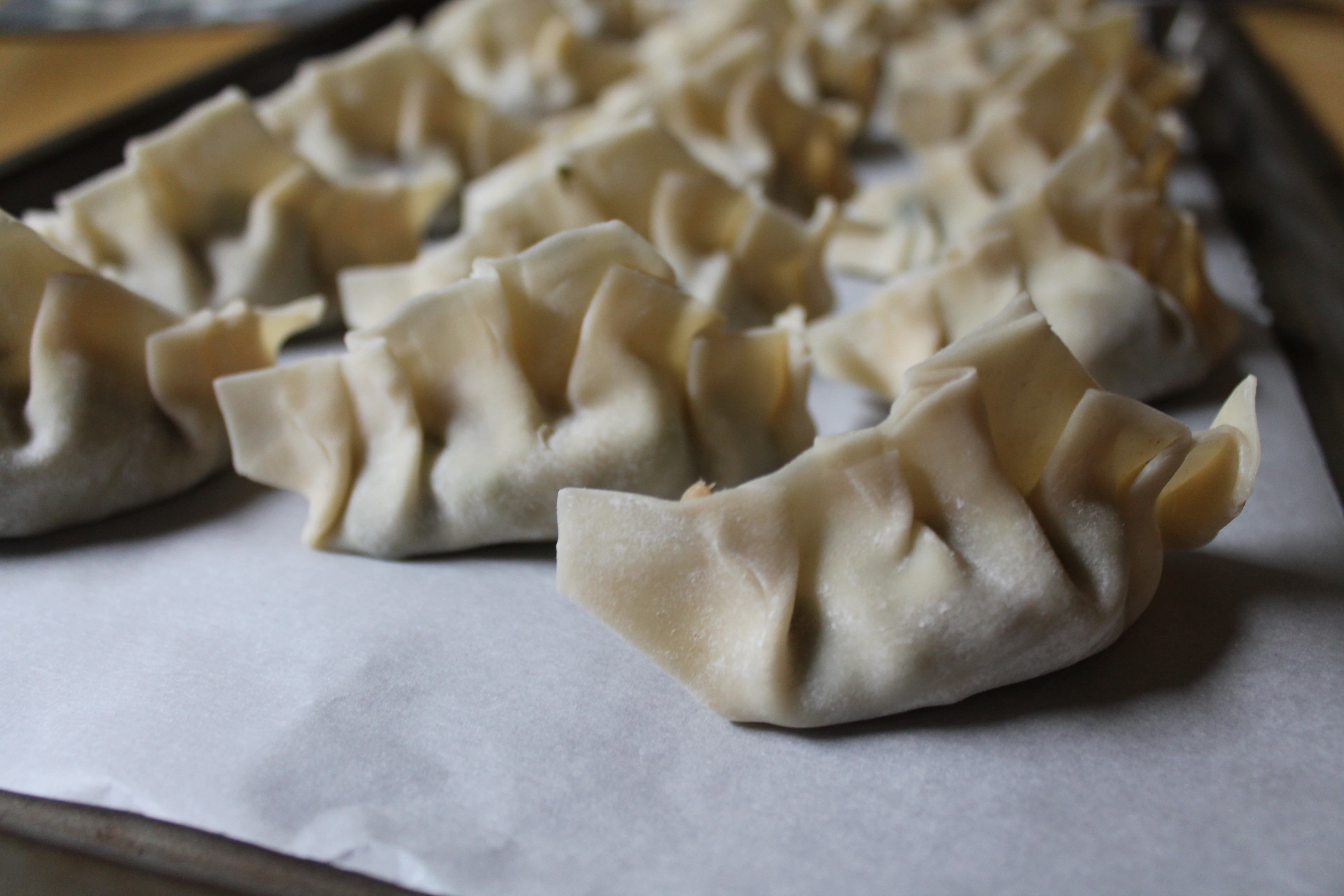 Beautiful Assembled Potstickers