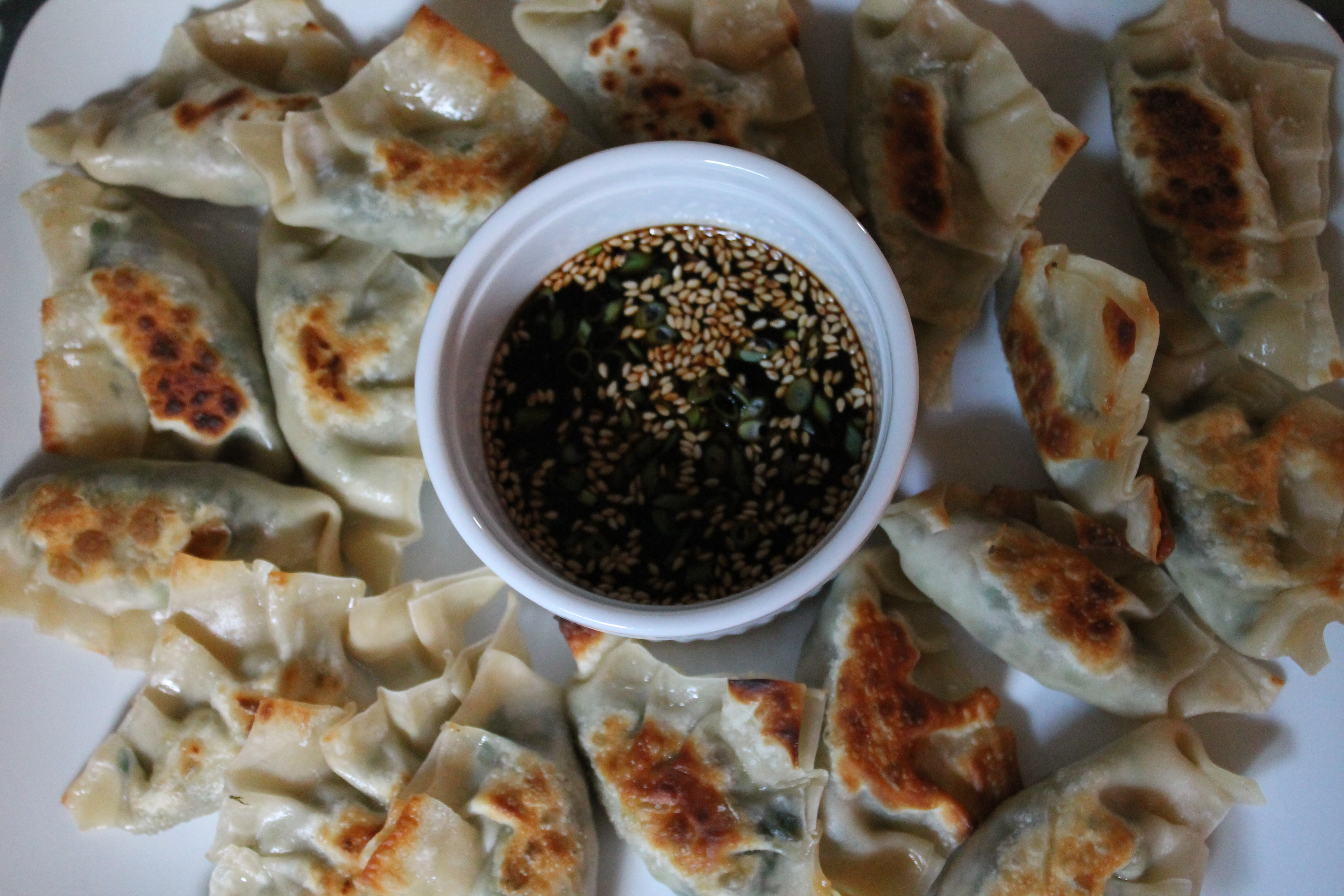 Potstickers and Dipping Sauce