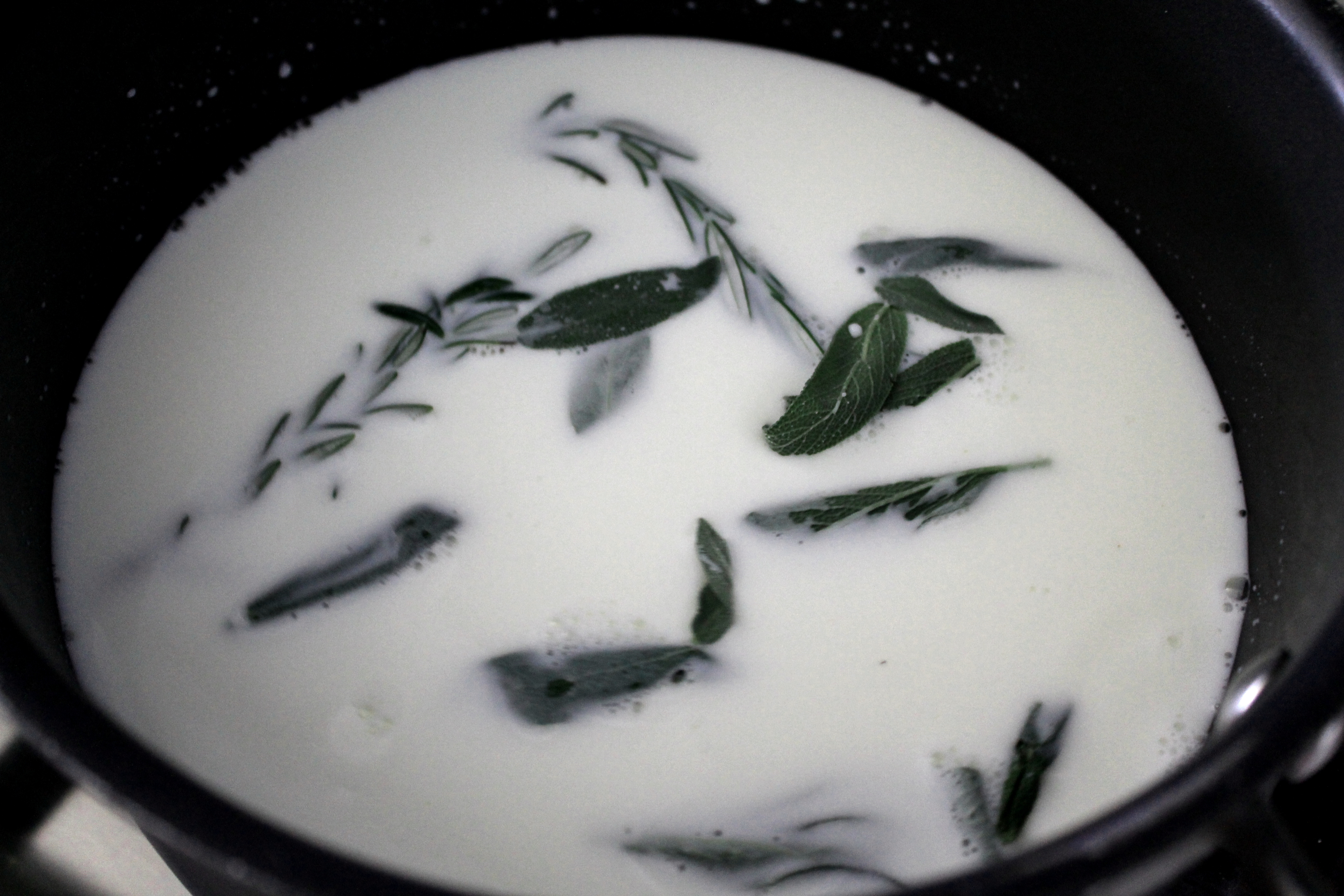 Herbs in Milk